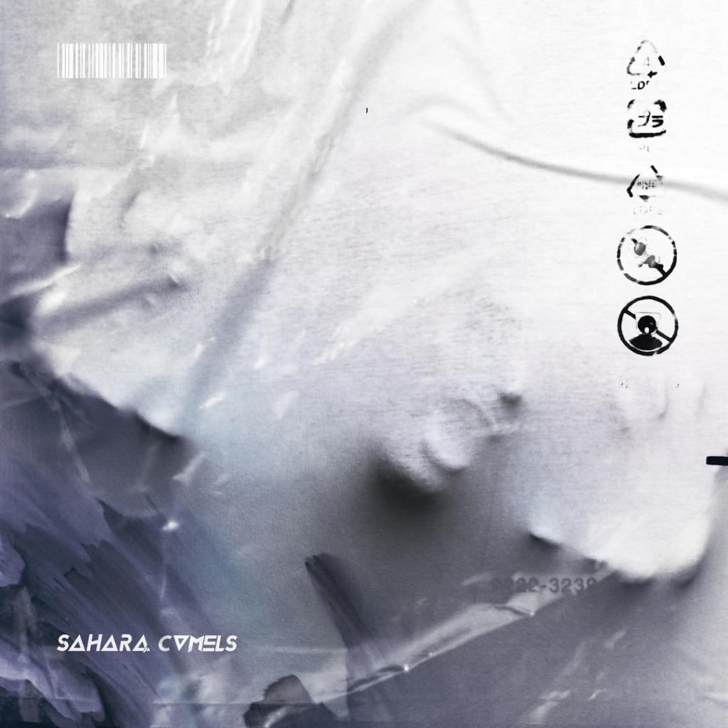 Sahara Camels Воздух